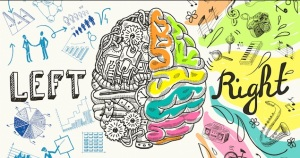 LR Brain